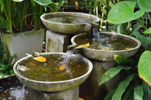 Erfolgsraum, Susanne Grethlein, Fürth, gibt Rat und Tipps für den Feng Shui Garten, zur Feng Shui Gartenplanung und unterstützt bei der Feng Shui Gartengestaltung