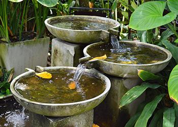Erfolgsraum, Susanne Grethlein, Fürth, gibt Rat und Tipps zur Feng Shui Gartenplanung und unterstützt bei der Feng Shui Gartengestaltung.